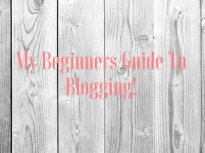 My Beginners Guide to Blogging